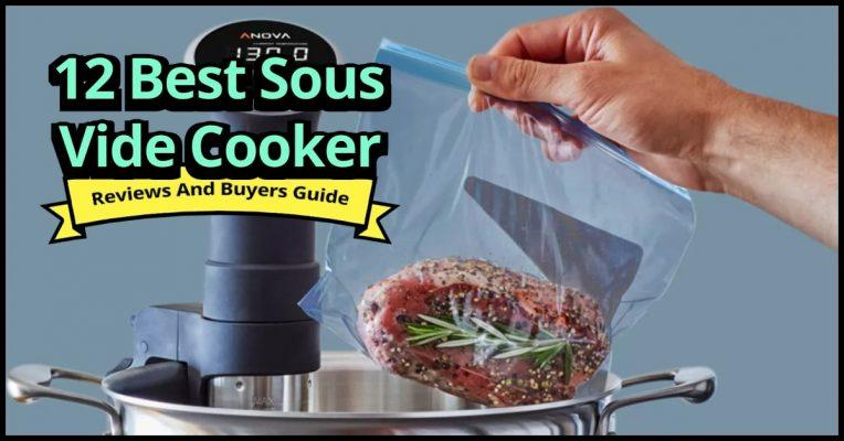 Best Sous Vide Cooker